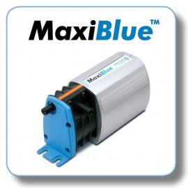 MaxiBlue (1)