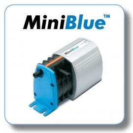 MiniBlue (1)